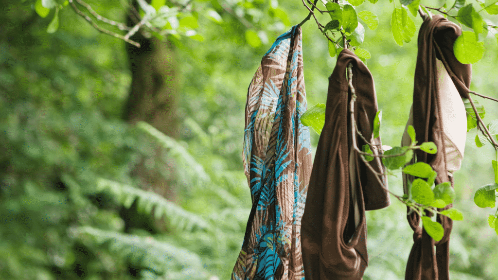 Clothes hanging on tree branch
