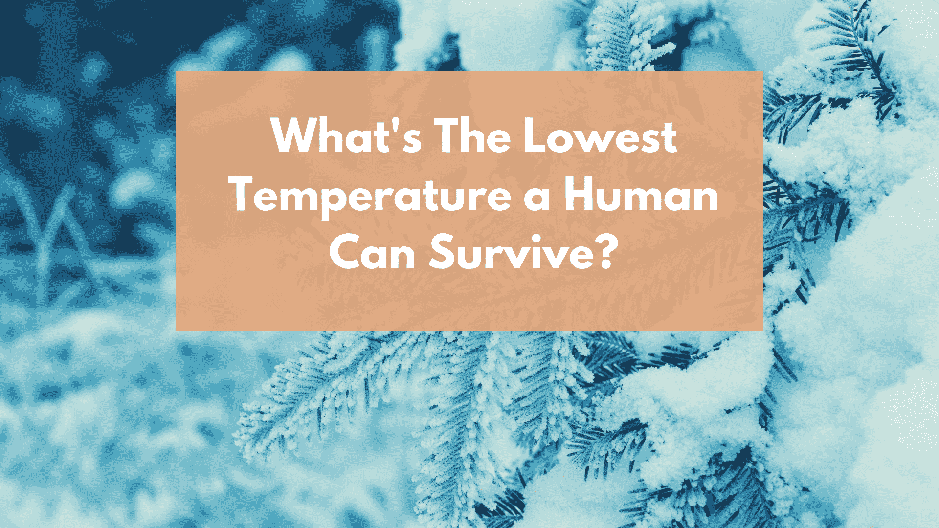 Lowest Temperature a Human Can Survive